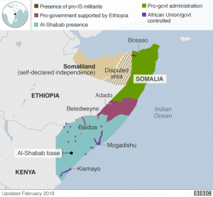 Somalia Control